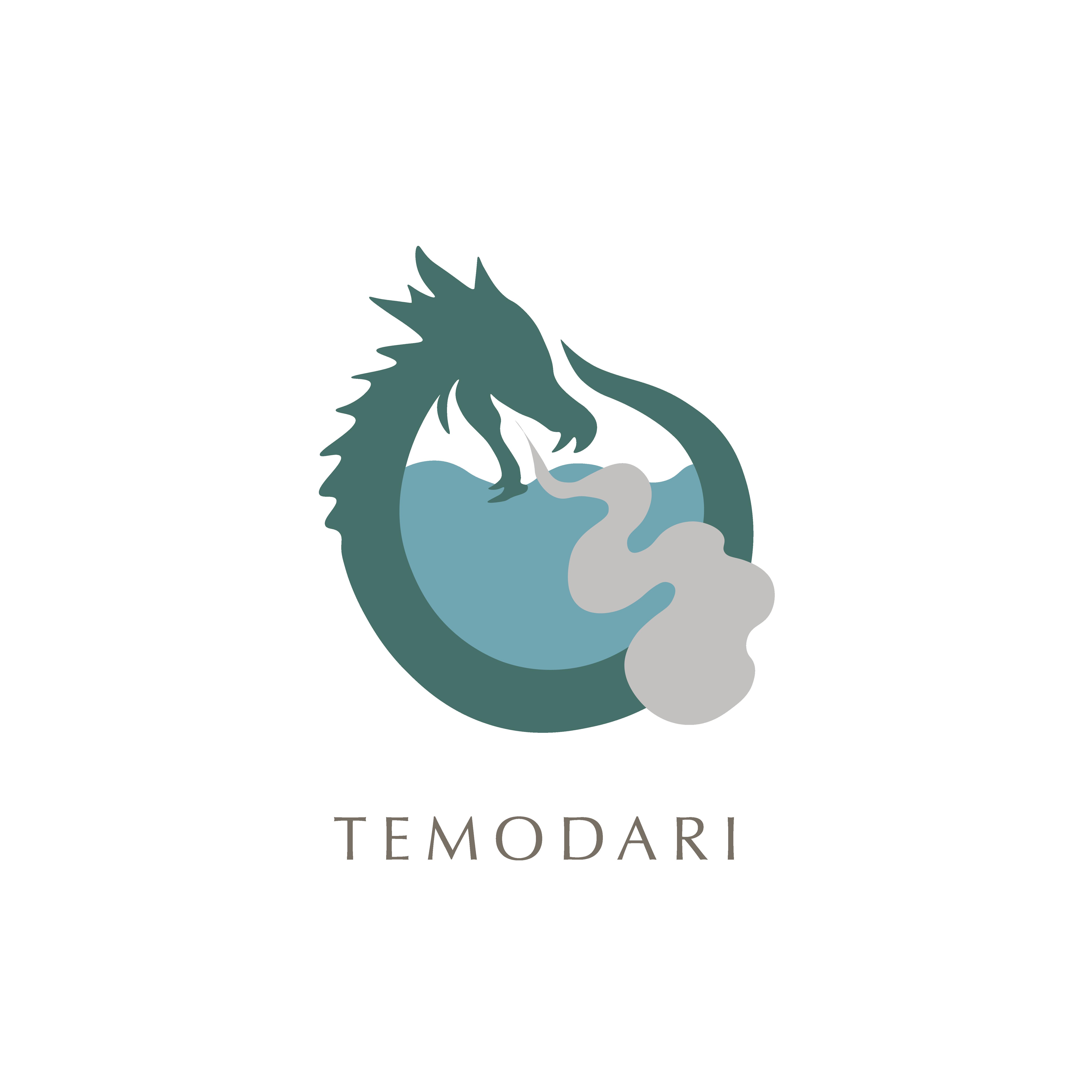temodari transparant-09.png